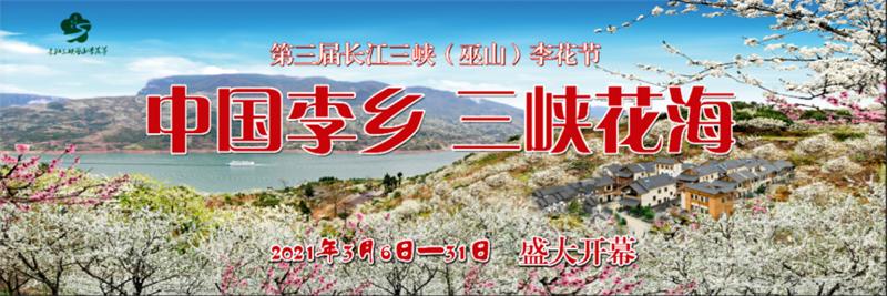 """""""中国李乡・三峡花海""""巫山县第"""